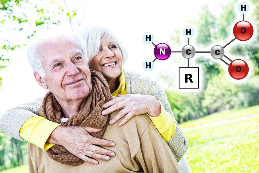 Aminosäuren - hilfreich bei Muskelaufbau und während der Wechseljahre