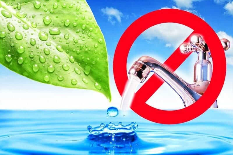 Die fünf besten Tipps gegen Wasserverschwendung